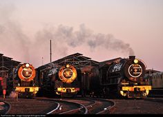 Classes 15F, 25NC & 12AR South African Railways SAR locomotive depot Germinston, SOUTH AFRICA 23 July 2011 by Eugene Armer South African Railways, Old Steam Train, Abandoned Train, Old Trains, Steam Engine, Steam Locomotive, Diesel Engine, Locs, Evolution