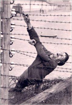 Výsledek obrázku pro nazi deutschland holocaust