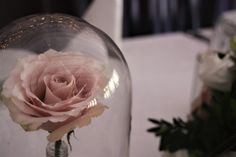 Wedding Beauty, Beauty And The Beast, Glass Vase, Decor, Beast, Decoration, Decorating, Deco
