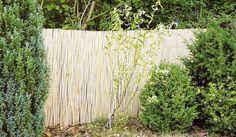 Bambusmatte aus Bambusrohren, mit verzinktem Draht gebunden in 5 m Länge und Höhen von 1-2 m
