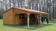 Lean-To Shedrow horse barn