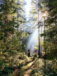 Apple Is Putting Users' Beautiful iPhone 6 Photos on Billboards and Print Ads Photo Bretagne, Poses Photo, 6 Photos, Adventure Is Out There, Taking Pictures, Land Scape, The Great Outdoors, Mother Nature, Beautiful Places