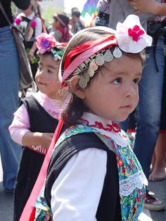 Resultados de la Búsqueda de imágenes de Google de http://www.djibnet.com/photo/51764310-mapuche-girl-nina-mapuche.jpg