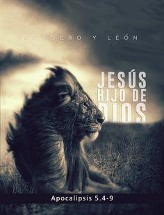 Cordero porque Jesús murió sacrificado. León porque Jesús resucitó y venció.