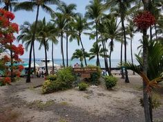 NEW LISTING: Just steps away from the best snorkel and swim beach!. ***BRAND NEW LISTING!! *** MONTHLY DISCOUNT*** A short walk to the famous Kahaluu Beach ...