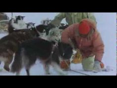 Antarctica 1983 magyar felirattal