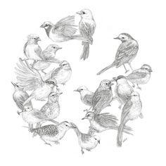 by okArt | [펜화] 새 : 네이버 블로그
