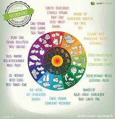 """La roue des vitamines… Vous vous posez des questions sur la nutrition & votre santé ? Moi aussi, je me suis inscrite à une série de vidéos : https://www.academie-vivante.com/nouvelle-serie-de-videos/?aff=5add8a&cpg=5ad49 Alexandre a créé le blog """"Manger Vivant"""" et ces vidéos sur """"l'alimentation vivante et ancestrale"""" font le buzz. 3° vidéo """"Des résultats définitifs"""" où il parle de perte de poids, santé et remise en forme ! #alimentation #alimentationvivante #vitamines #dietetique #rawfood"""