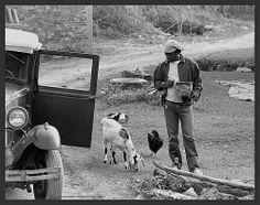 """Milton Nascimento (Rio de Janeiro , 26 de outubro de 1942) é um cantor e compositor brasileiro, reconhecido mundialmente como um dos mais influentes e talentosos cantores e compositores da Música Popular Brasileira. Mineiro de coração, tornou-se conhecido nacionalmente, quando a canção """"Travessia"""", composta por ele e Fernando Brant, ocupou a segunda posição no Festival Internacional da Canção, de 1967."""