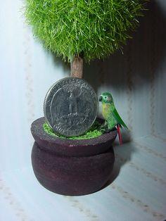 1:12 Scale Dollhouse Miniature Green Cheek Conure by CDHM Artisan June Girardi of Junes Minis, www.cdhm.org/user/tropicaltree