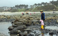Looking for things to do on the Oregon Coast for kids? These two beach communities offer attractions and accommodations for the whole family.