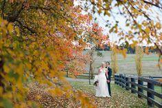 Southern Highlands Wedding: Bendooley Estate