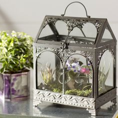3 Small Garden DIYs to Try This Weekend | Wayfair