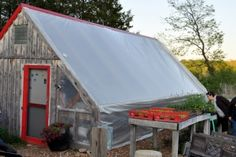 Urban homesteading in Colombia, MO. Easy to use, nice website with all sorts of personal experience info.
