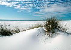 Sugar White Sand Dunes / Santa Rosa Beach Florida