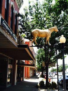 City of Hillsboro, Texas