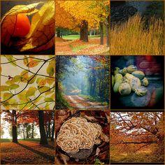 The Season of Autumn