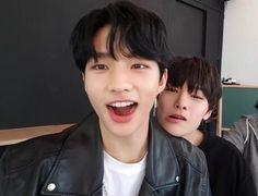 Jeongin is me. Jeongin is everyone😂💕 -Tea Boys Are Stupid, Daddy Issues, Fandom, Lee Know, Kpop Boy, Boyfriend Material, A Funny, K Idols, Mixtape