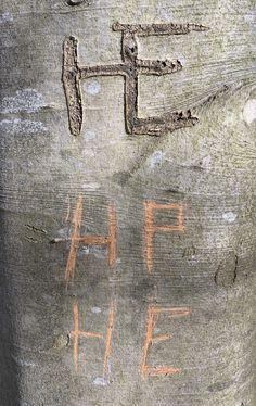 Baum geritzt# Geschnitzte Initialen# Rinde geritzt# Foto# Interessant was man an Bäumen so findet. Arrow Necklace, Jewelry, Kinetic Art, Contemporary Art, Wood Carvings, Sculptures, Tree Structure, Jewlery, Schmuck