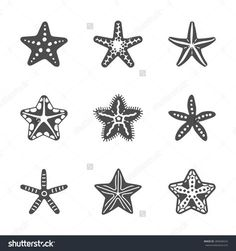 Shape set of various sea starfish. Vector illustration