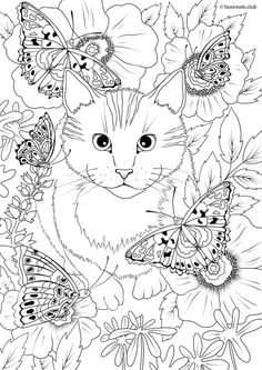cats and dogs coloring pages 532 Best Printables   Cats & Dogs colouring pages images in 2019  cats and dogs coloring pages