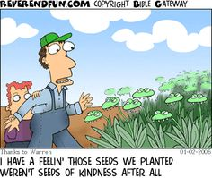 sow+and+reap+cartoon.gif (360×305)