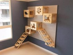 Add some carpet and some toys, and you have an ideal cat play area that doesn't … – shona barry – Cat playground outdoor Niche Chat, Cat Climbing Wall, Cat Playground, Cat Shelves, Cat Enclosure, Cat Room, Pet Furniture, Furniture Plans, Space Cat