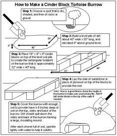 How to Make a Cinder Block Tortoise Burrow Tortoise Habitat, Tortoise Care, Tortoise Turtle, Tortoise Food, Turtle Habitat, Tortoise House, Tortoise Enclosure, Turtle Enclosure, Sulcata Tortoise