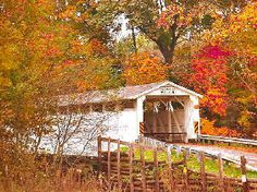 Banks Bridge in Amish County - New Wilmington PA