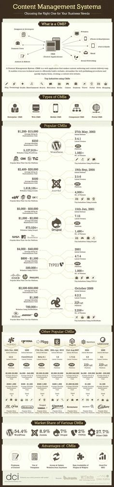 What Is A CMS And What Are Some Popular CMS   Infographic