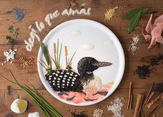 Food Illustration: the state bird of Minnesota, the Loon. Anna Keville Joyce, Buenos Aires, Argentina.