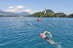 News - Why Go for Open Water Swimming - Martin Strel Swimming Adventure Holidays | Vacations