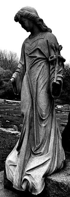 Forest cemetery Toledo Ohio
