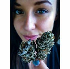 Its a beautiful site when your looking deep into the site of #cannabis   Luxury Cannabis Lifestyle at 6weedgod.com  #6weedgod #Toronto #Canada #vancouver #cannabis #canadianstoners #dope #weedsociety #marijuana #luxurytoronto #maryjane #green #smoke #medicalcannabis #acmpr #mailorder #sativa #hightimes #stayhigh #ganja #vape #healthy #indica #realestate #kush #ontario #onlinedispensary #mailorderonline #legalcannabis