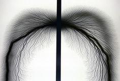 Hiroshi Sugimoto : Lightning Fields