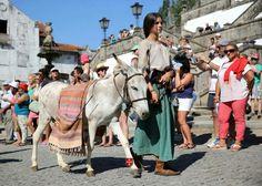 """Burro Julio da """"Fazenda dos Animais"""" na Viagem Medieval em Terras de Santa Maria  www.fazendadosanimais.pt"""