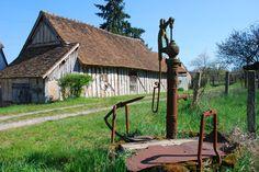 Entre forêts à perte de vue, châteaux Renaissance et boucles de la Loire se dessine une région naturelle à la beauté exceptionnelle, la Sologne. Le temps d'un week-end, découvrez les trésors royaux qu'offre la Sologne.
