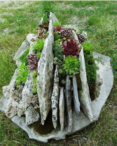 interesting planter made of rocks