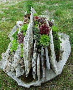 interesting planter made of rocks