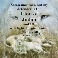Great Lion of Judah! my Lion Protector. Our Lion God will protect all who call upon His Name. Whatever troubles come our way, we can reach for GOD's mane. God covers and defends His cubs -- us who obey our LORD! Bible Scriptures, Bible Quotes, Lion Bible Verse, Lion Quotes, Encouragement Quotes, Motivational Quotes For Life, Inspirational Quotes, Positive Quotes, Spiritual Quotes
