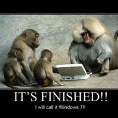 Funny Animal Posters Funny Animal Images, Funny Images, Funny Animals, Cute Animals, Funny Photos, Jokes Photos, Funniest Animals, Funniest Pictures, Funny Monkey Memes