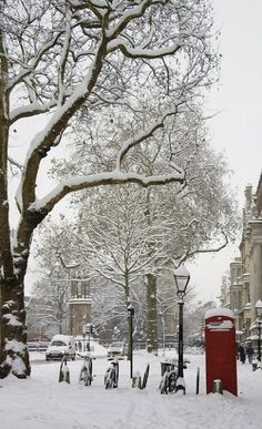 bicycles and red phone box, in snow.. Oxford, England