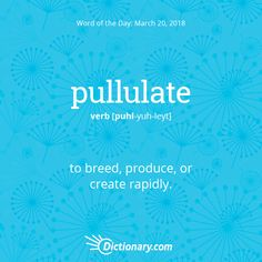 Dictionary.com's Word of the Day - pullulate - to breed, produce, or create rapidly.