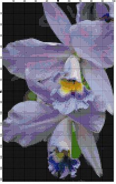 Cross Stitch Pattern Pale Lavender Orchid Flower Garden Cross Stitch Design Chart PDF File Instant Download by theelegantstitchery on Etsy