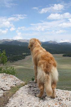 Gorgeous view!