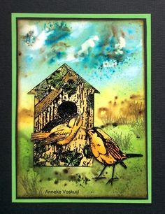 Art Journey Design-team Brusho, Cardmaking And Papercraft, Journey, Graphic 45, Tim Holtz, Card Making, Garden Birds, Paper Crafts, Artwork