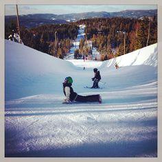 Yoga on the snow, snowboarding, pipe, upward facing dog