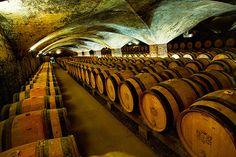 Cave du chateau de Meursault