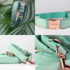 The FRESH MINT dog collar and leash with rose gold hardware I www.prunkhund.com