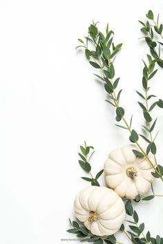 Styled stock photo with white pumpkins for crafters and seamstresses. This is the perfect flat lay picture for your blog banner or website header | by NordicCopperDesign